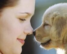 La scelta del cane di piccola taglia da tenere in casa