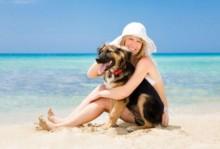 Spiagge per cani in Italia Spiagge per cani in Italia 220x149 - Spiagge per Cani in Italia
