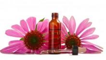 Prevenire influenza e raffreddore con i rimedi naturali