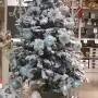 Colori Albero di Natale 2015