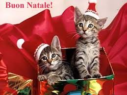 frasi natalizie frasi natalizie - Le più belle frasi di auguri di Natale, Capodanno e Befana