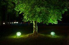 Illuminazione del giardino 220x146 - Valorizzare l'Esterno di Casa con l'illuminazione per Alberi