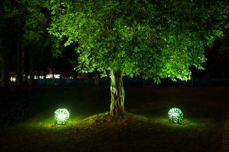Valorizzare l esterno di casa con l illuminazione per alberi the