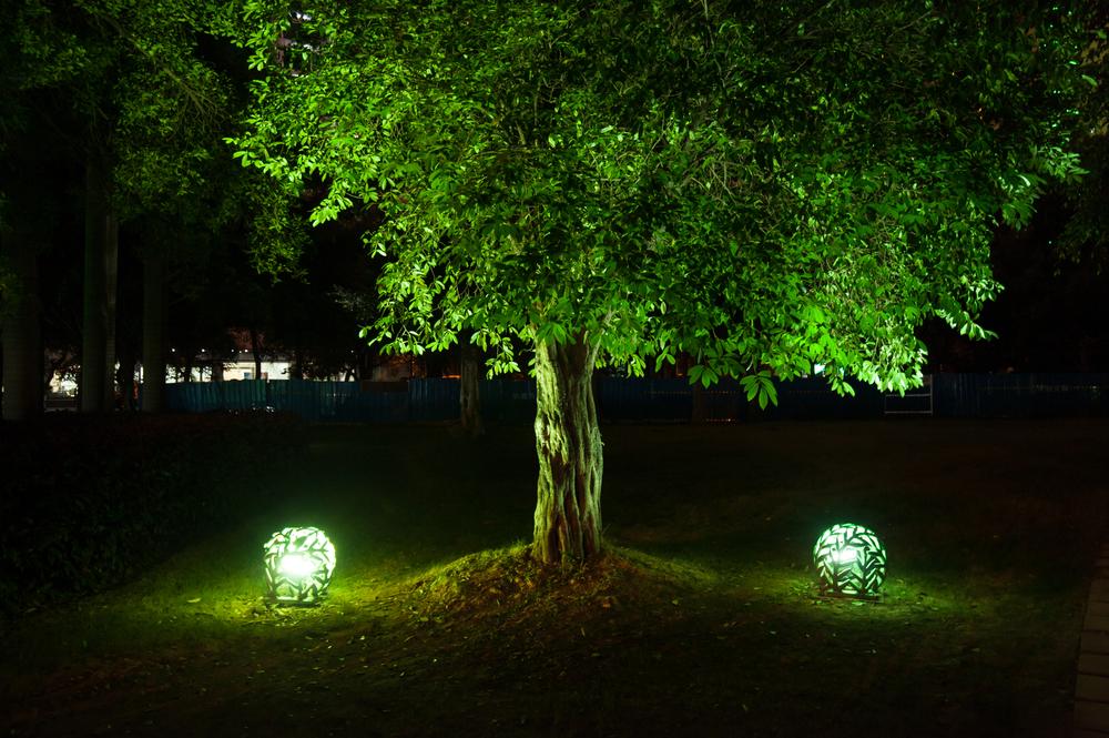 Illuminazione del giardino - Valorizzare l'Esterno di Casa con l'illuminazione per Alberi