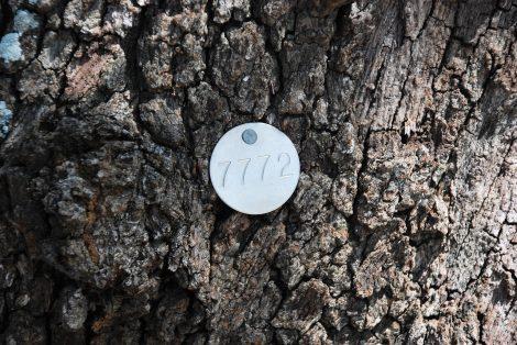 Differenze e vantaggi tra marcatura laser e marcatura a micropunti 470x314 - Differenze e vantaggi tra marcatura laser e marcatura a micropunti